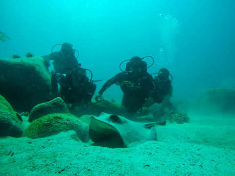 Buceo de Descubrimiento en Galápagos