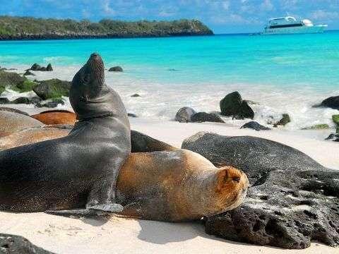 Galápagos Santa Cruz