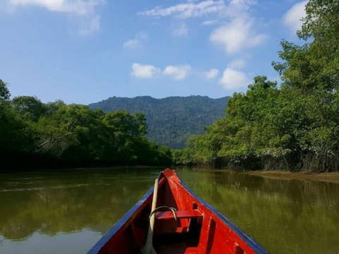 Full Day - Mangroves Churute