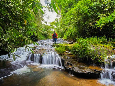 Day of Waterfalls and Medicinal Plants in the Amazon