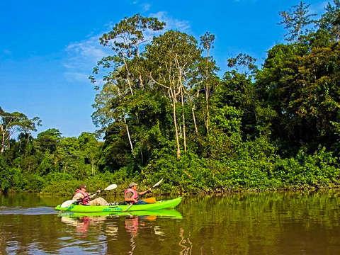 4d/3n Kayak y Trekking en el Selva Virgen de Yasuní