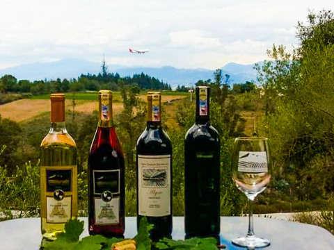 Wine Tour and Tasting at Chaupi Vineyard