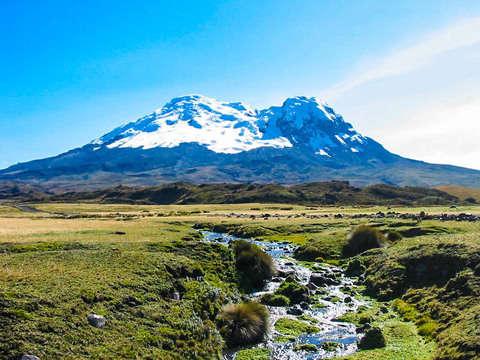 Excursion to the Antisana Volcano in the Eastern Cordillera